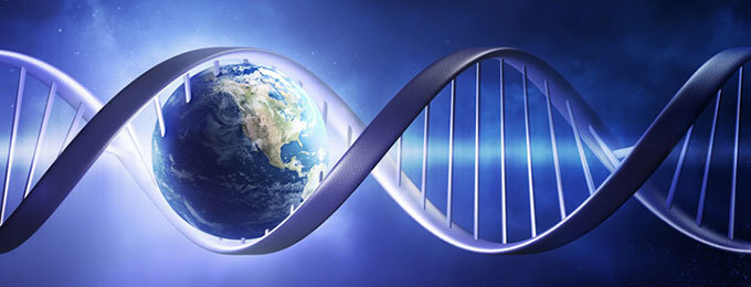 ДНК тест за потекло
