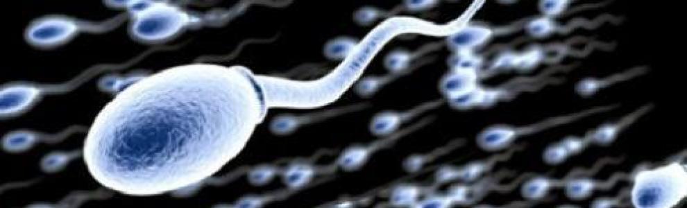 MЪЖКИ ФАКТОР - спермограма, витамини, съвети - ТЕМА 10